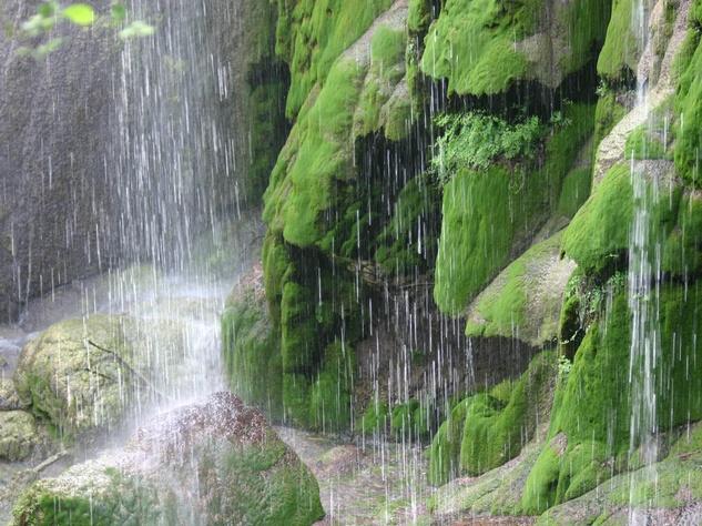 base of Gorman Falls in Colorado Bend State Park