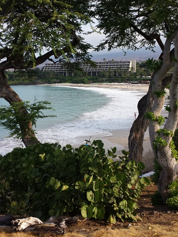 Jane Howze Postcard from the Big Island Hawaii December 2013  Mauna Kea Beach Hotel