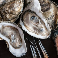 Oysters at SaltAir Seafood Kitchen
