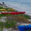 tortugas_kayaks