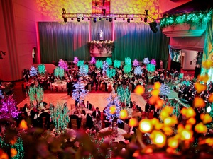 023, Houston Ballet Ball, February 2013, crowd, venue