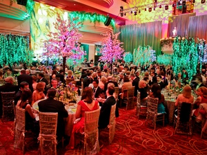 028, Houston Ballet Ball, February 2013, crowd, venue