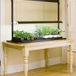 Standard Tabletop Sunlite Garden