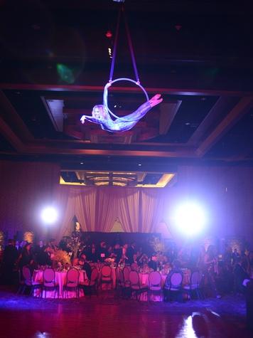 Moon Aerialsit 2 at the JDRF Gala April 2014