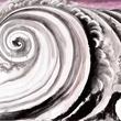 Don Ed Hardy, 2000 Dragons, tsunami