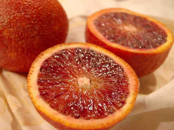 News_Joel Luks_vegan Thanksgiving_blood orange