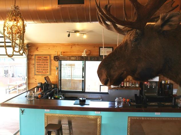 Lustre Pearl Rainey March 2016 bar moose