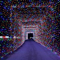 Christmas Light Fest