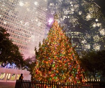 These Are The Best San Antonio Restaurants For Christmas