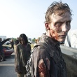 News_Marene_The Walking Dead