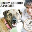 """johnny goudie with apache of Austin Pets Alive! for """"music and mutts"""""""