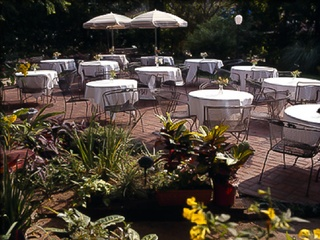Places_Food_Daily Review_patio