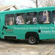 Austin_photo: places_shopping_paws of austin_bus