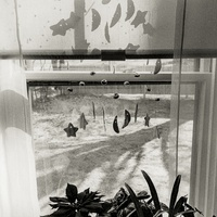 Dallas Center for Photography Speaker Series: Reid Callanan
