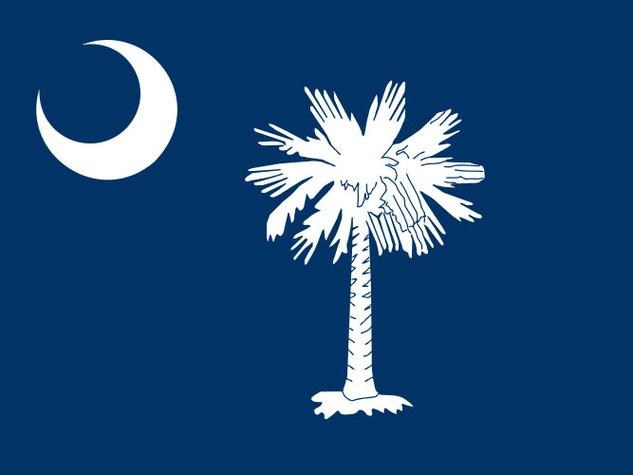 south carolina flag, flag, south carolina
