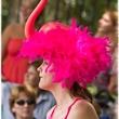 News_Art Car Parade)_flamingo_May 2012
