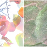 grayDUCK Gallery presents Elizabeth Chiles & John Swanger: Lumens & Currents opening reception
