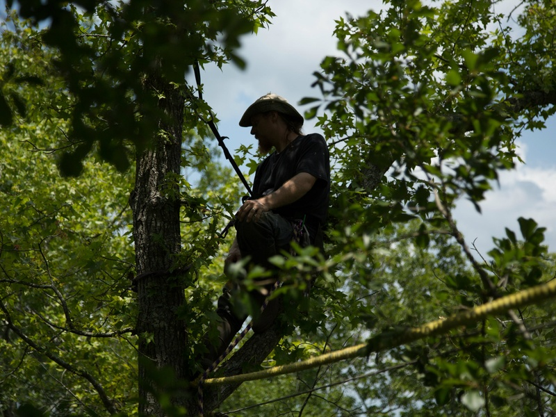David Daniel of east Texas in a tree from the SXSW documentary Above All Else