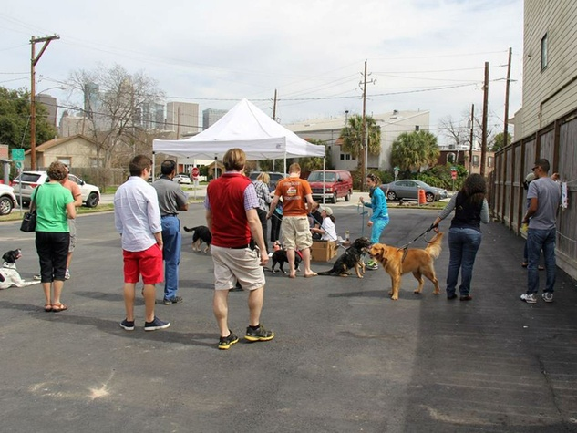The scene at Paint with Your Pet February 2014