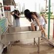 Married to Medicine Houston dog wash