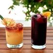 Austin Motel Fine Foods cocktails