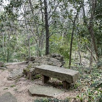 Hogg Bird Sanctuary bench at 1 Crestwood Drive