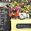 News_Flora_Muse_pattisserie_floral cart