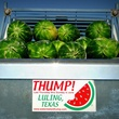Luling Watermelon Thump Festival