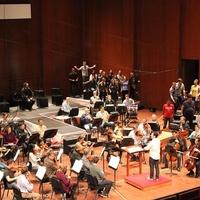 "Houston Symphony presents ""Mozart's Abduction"""