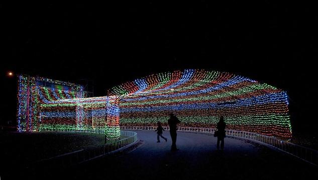 Austin Photo Set: News_aleks_trail of lights_dec 2012_1