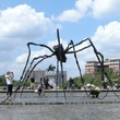 2 spider sculpture Hermann Park April 2014