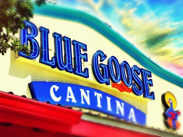 Blue Goose Cantina restaurant in Dallas