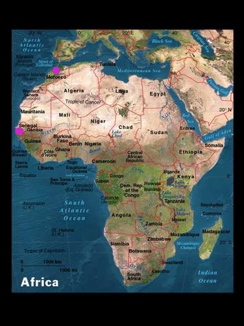 Austin Photo Set: News_Tiffany Harelik_Trailer food_Africa_August 2011_map of africa