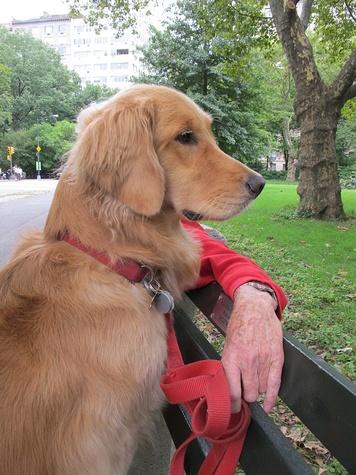 News_Katie_9-11_Bobbi Quilot_age 3_Central Park