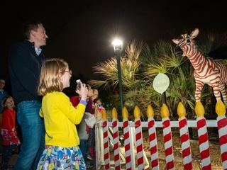 Zoo Lights dancing zebra