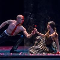 Ballet Austin presents Belle REDUX/A Tale of Beauty & the Beast