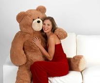 Teddy Bear, Valentine's Day, model