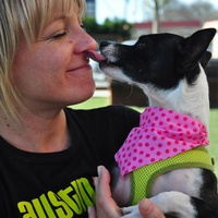Emmie Austin Pets Alive
