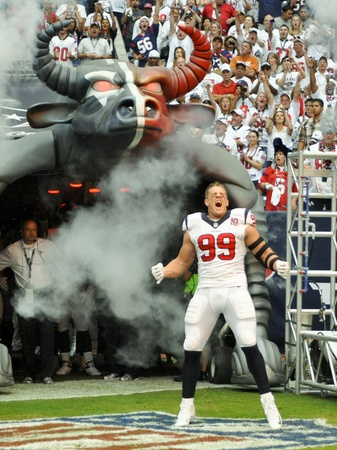 J.J. Watt Texans Bull