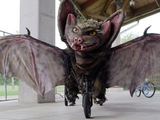 Bat Bike Austin Bike Zoo