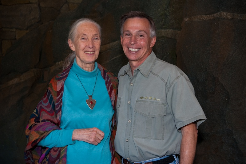 a plea for the chimpanzees jane goodall essay Watch video· jane goodall has taught the world more about chimpanzees than anyone else in the world her dream to study our closest relatives began in 1960 in gombe park, tanzania.