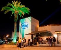News_South Beach_bar_gay bar