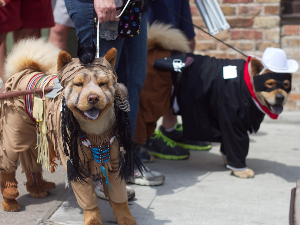 Easter Pet Parade on South Congress 2014 Tonto Lone Ranger