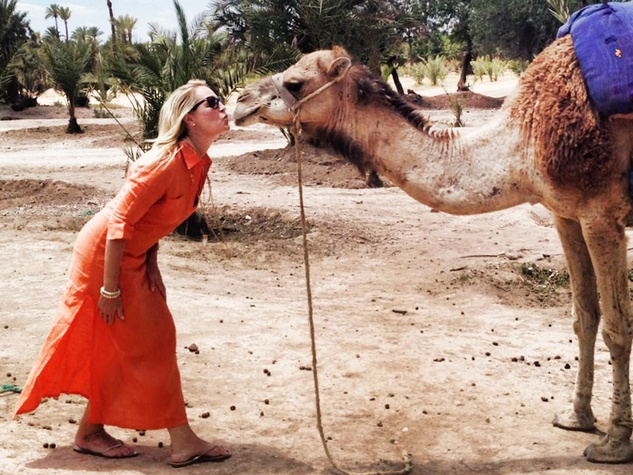 travel photos by Laurier Blanc June 2014 Marrakech Camel