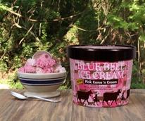 Blue Bell ice cream Camo 'n Cream, September 2017