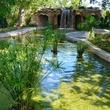 Lay Garden at Dallas Arboretum