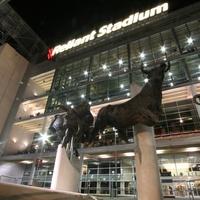 Reliant Stadium at night with bull sculptures