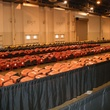 Alamodome auction and sale preview November 2013 seats