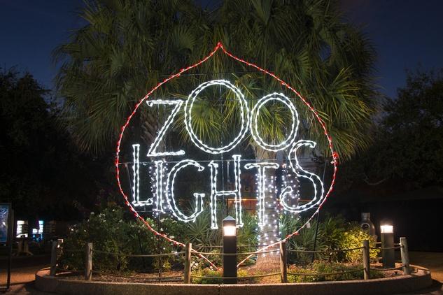 Houston Zoo lights November 2014