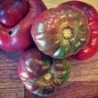 Purple cherokee tomatoes at In.gredients in Austin